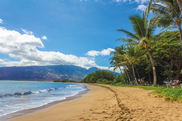 Destination: Aloha!